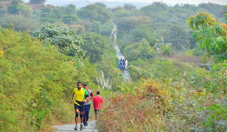 Aravalli Bio Diversity Park is one of the most refreshing places to visit in Gurgaon.